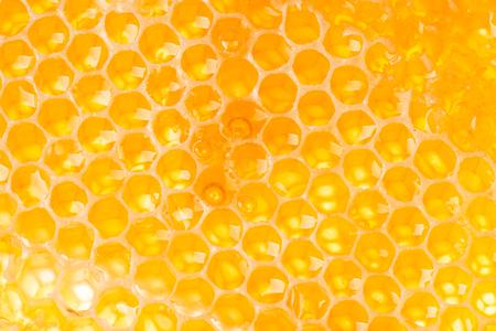 comb: Honey Comb