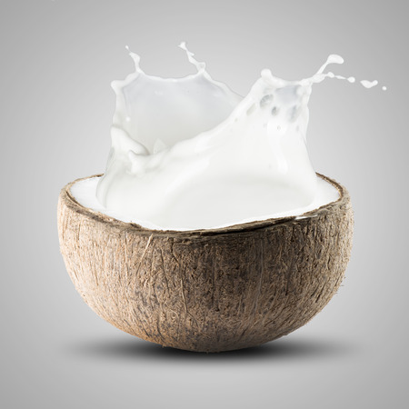 trees photography: Coconut Splash