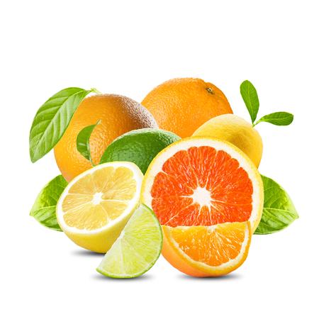 흰색 배경에 다양 감귤류 과일
