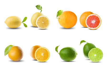 Frische Zitrusfrüchte auf Weiß Standard-Bild