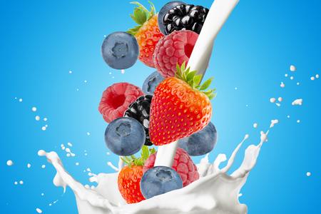 Various Berries, Blackberry, Blueberry, Strawberry, And Raspberry Falling Into Milk Splash