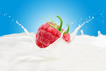 Raspberry With Milk Splash 版權商用圖片