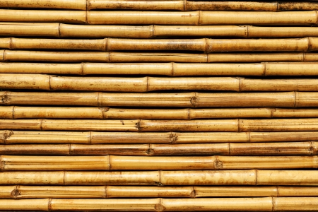 bamboo fence Stock Photo - 16677448
