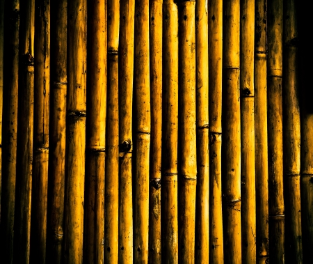 grunge bamboo background Stock Photo - 16677437