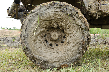 Cars wheels in mud in the forest, off-road Stock Photo