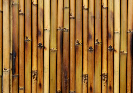 bamboo burn background