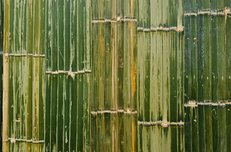 bamboo fence green texture