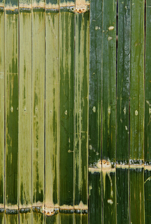 bamboo fence green Stock Photo