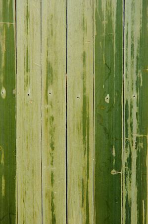 bamboo green semless Stock Photo
