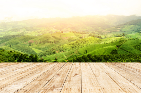 Wooden planks floor with summer mountain landscape.