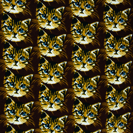 Texture fabric cat head