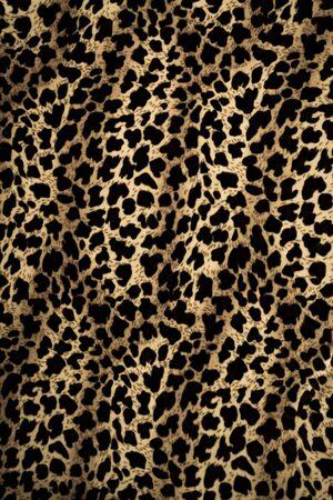 gepard: Leopard background