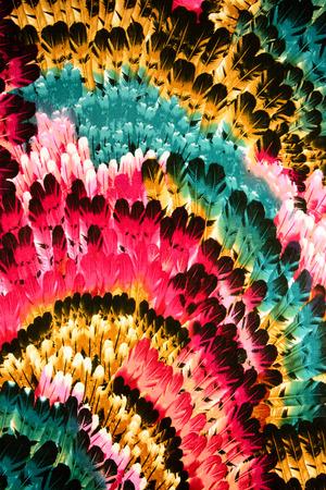 pluma: Modelo de la tela de la textura de las plumas