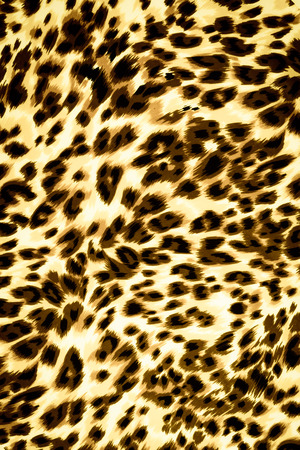 to conceal: Texture fabric of leopard skin for background