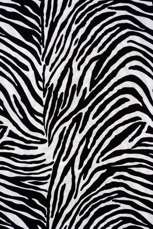 zebra: Tela de la textura de la cebra para el fondo