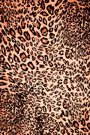 chetah: texture fabric wild animal pattern background Stock Photo