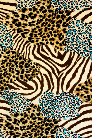 color conceal: texture fabric of tiger prints and zebra for background