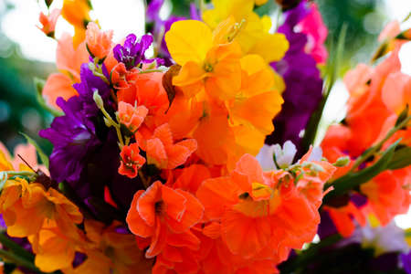 plastic made: Colourful artificial flower made from plastic and fabric