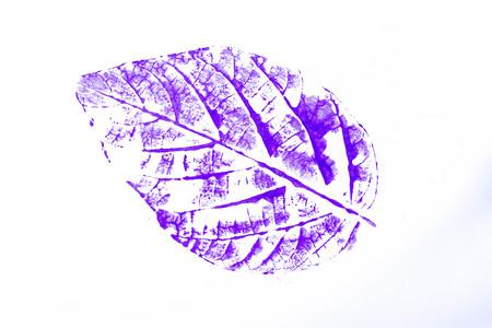 medium: Photo of watercolor leaf