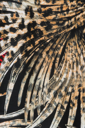 ararauna: Texture Fabric pattern of the feathers