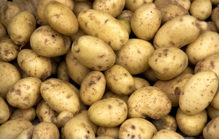 potatoes raw vegetables food in market for pattern  texture and background 写真素材