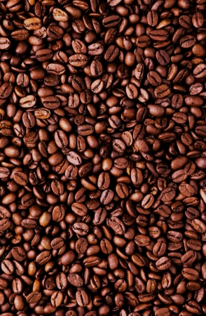 large bean: Brown coffee beans, close-up of raw coffee bean for background and texture