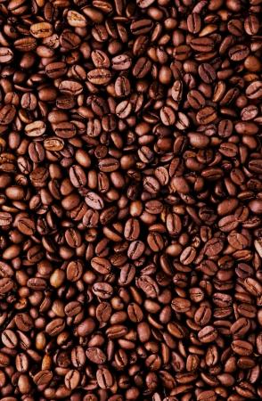 semilla de cafe: Granos de café Brown, primer plano de grano de café verde para el fondo y la textura