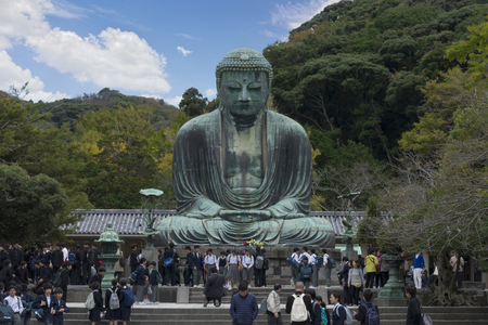 KAMAKURA, JAPAN - FEB 15, 2015 : The Great Buddha sculpture is the top landmark of Tokyo, Japan. Kamakura Daibutsu at Kotokuin temple . The Famous big buddha bronze statue is the popular tourist place in Japan
