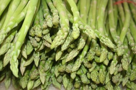 Asparagus officinalis  Stock Photo