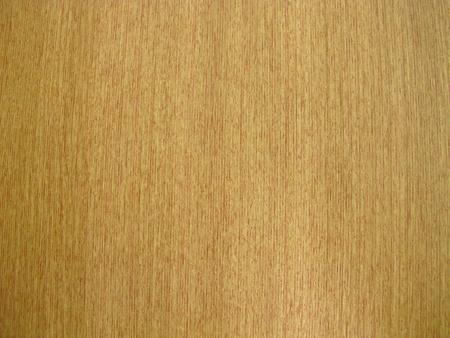 toilet door: wood texture on a toilet door.