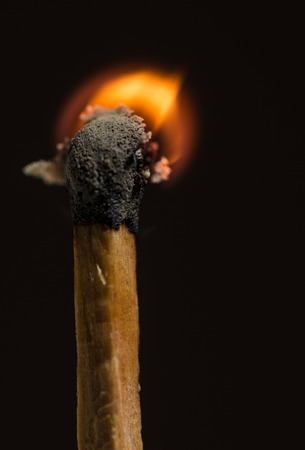 matchstick: One matchstick is burning in macro shot.