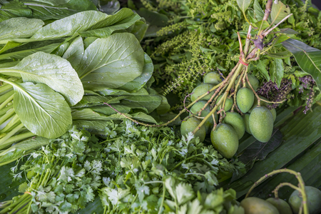 Organic vegetables in market. Raw mango, basil, choy and coriander. All green vegetables. Natural light and selected focus.