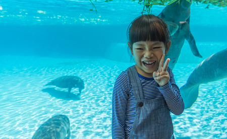4 years old, little Asian girl in front of manatees glass tank. Little girl on vacation in summer. Smiling face of little girl. Space for text.