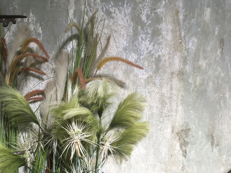 Beautiful grass flower for decoration with vintage style concreat wall as backdrop. Space for text