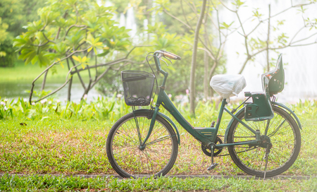 Close-up of old bicycle with old green plastic child seat standing in garden. Basket in front of bicycle. Space for text.