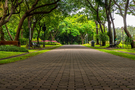 Beautiful pathway in public  park. Low angle view. Stock fotó