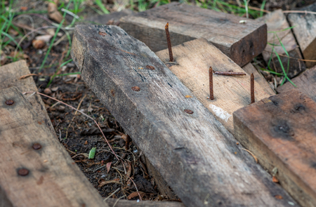 Dengerous rusty nail in wood plank on ground. Danger concept.