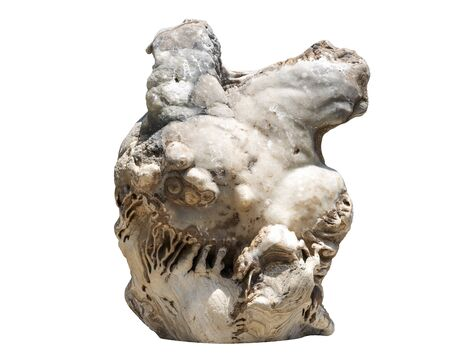 Isolated rock, uniquely beautiful shape. Large stones for gardening and landscape design in white, shaped like a human heart, smooth surface with complex structure in beautiful patterned details.