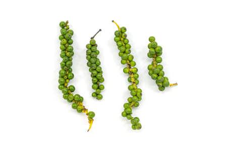 Isolated flat image of organic fresh peppercorns on white background, green color, close up image. Reklamní fotografie