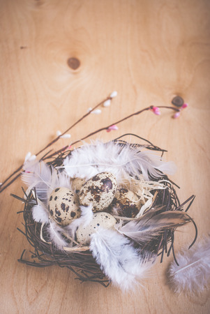 Easter eggs decoration. Eggs and flowers on wooden background photo