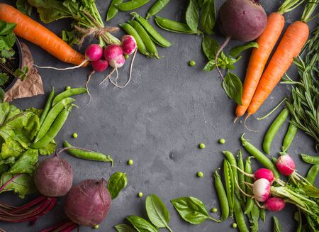 Fresh vegetables on rustic concrete background. Carrot, beet, radish, green pea, herbs. Harvest/gardening concept. Healthy food. Vegetarianism. Clean eating. Space for text. Making salad ingredients Stockfoto