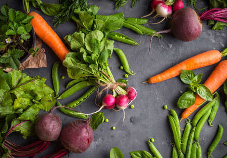 Fresh vegetables on rustic concrete background. Carrot, beet, radish, green pea, herbs. Harvest/gardening concept. Healthy food. Vegetarianism. Clean eating. Top view. Making salad ingredients