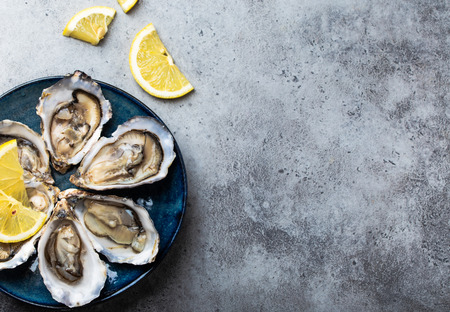 Set of half dozen fresh opened oysters in shell with lemon wedges served on rustic blue plate on gray stone background, close up, top view, space for text 스톡 콘텐츠