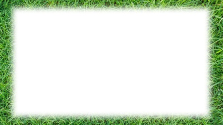 grass frame photo