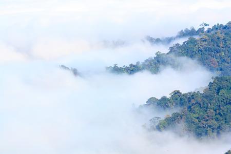 kaeng: sea of mist at Kaeng Krachan nationalpark,Thailand Stock Photo