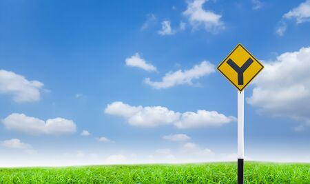 ramification: road sign on green grass and blue sky