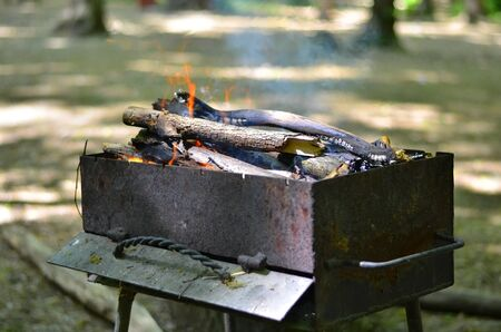 brazier: Brazier with burning firewood Stock Photo