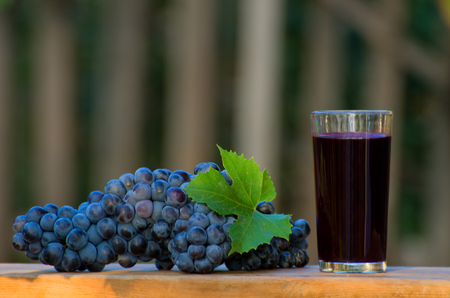 Bunch of blue grapes and a glass of grape juice on the table in the garden
