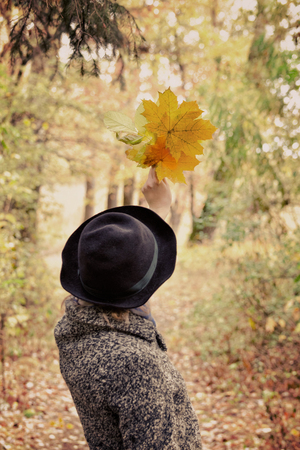 Girl in a hat holding a bouquet of yellow leaves. Autumn forest. Back view Stock Photo