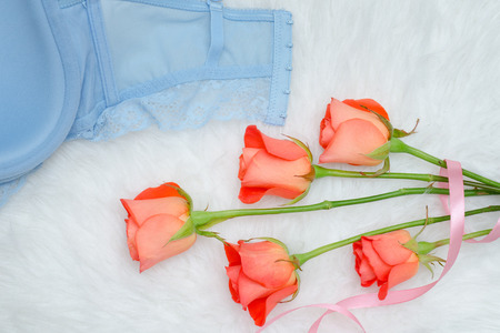 Iinner side of the blue bodice with lace on white fur. Orange roses.  Fashionable concept. Close up Stock Photo